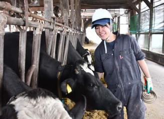 乳牛の世話をする橋本沙織さん。初の女性技能員として日々研さんを積んでいる