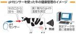 牛の胃 監視センサー開発 岩手大発の技術、酸性度即時に計測