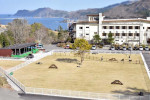 沿岸最大級、ドッグラン24日開業 釜石のホテル、一緒に宿泊も