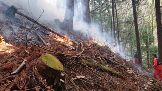 大槌町で発生した山林火災。頻発する時季に入り、各地の消防本部は警戒を呼び掛ける=13日午後(大槌消防署提供)