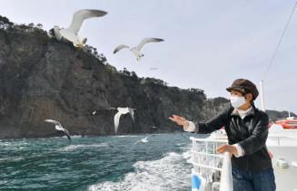 断崖やウミネコが飛ぶ景色を船上から楽しむ観光客=24日、田野畑村
