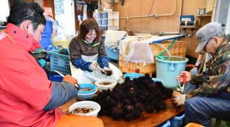 家族でウニの殻むきに励む黒沢洋輔さん(左)