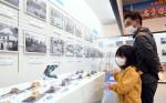 昭和の漁業や街並みを今に 宮古の県立水産科学館が企画展
