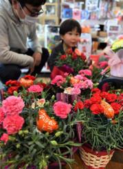 「母の日」のプレゼント向けの花が並ぶ田村フローリストの店内=8日、盛岡市青山