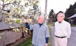 守れ イワテヤマナシ 奥州、植栽活動を開始