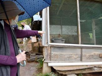 クマに襲われた鶏小屋を示す女性=11日午後、盛岡市山岸