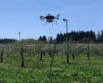 リンゴ授粉にドローン 県内、省力やスピード化狙い試験導入