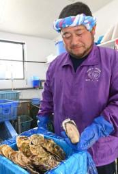 オンライン販売で取れたてのカキを提供する山田町の漁業者