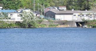 堤防整備が検討される宮古市藤原上町の川岸