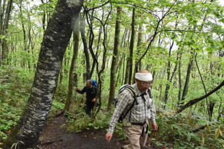 山頂を目指して新緑の登山道を進む愛好者