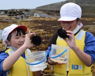 増殖溝で採取したキタムラサキウニを手に笑顔を見せる宿戸小の児童
