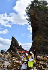 潮が引いた三王岩周辺で磯遊びを楽しむ田老一小の児童ら=28日、宮古市田老