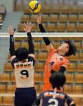 バレーボール女子、花巻南21大会ぶりV 県高校総体