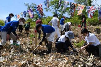 広葉樹の苗木を植える参加者