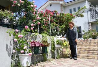 色とりどりのバラが見頃を迎えている庭園