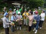 野菜作り 新たな交流 一関・千厩のサロンアップル会