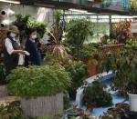 花と泉の公園内のベゴニア館、今月末閉館 21年の歴史に幕