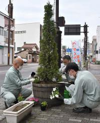 ワインたるのプランターに花苗を植える参加者