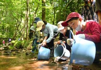 山口川にヤマメとイワナの稚魚を放流する子どもたち
