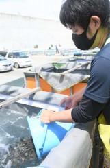 輸送用の水槽にヒラメの稚魚を移す職員