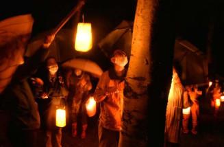 カンテラで木や花を照らしながら夜の県民の森を散策する参加者