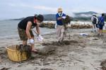 にぎわい再び 海開き前に清掃 陸前高田の高田松原海水浴場
