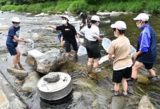 学校統合のため最後の活動となった水生生物調査に取り組む大川小の児童