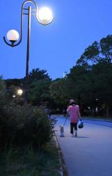 日没後の大濠公園で愛犬と散歩を楽しむ人。暑気が去り、涼しい風も吹いて、犬にも人にも快適な時間帯だ