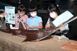 暗闇、深海魚みっけ 山田・鯨と海の科学館「ナイトミュージアム」