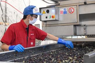 高品質のワインを目指し醸造作業に励む社員
