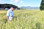 農家保険、県内で加入増 コロナ減収にも対応