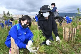 高田松原で草刈りボランティアに励む親子