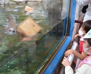 サイコロフィーダーで遊ぶリッキー(手前左)とカエデに熱視線を送る子どもたち