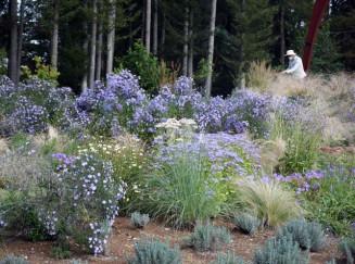 季節の花々が咲き誇る「花とアートの森」
