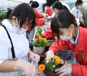 会話を弾ませながら寄せ植えを楽しむ生徒たち