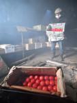 甘く染まる赤 釜石・甲子柿作り最盛期