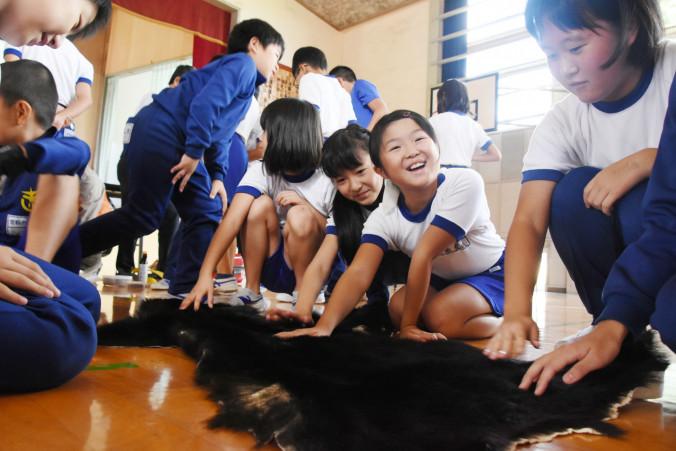 興味深げにクマの毛皮に触れる笠松小児童