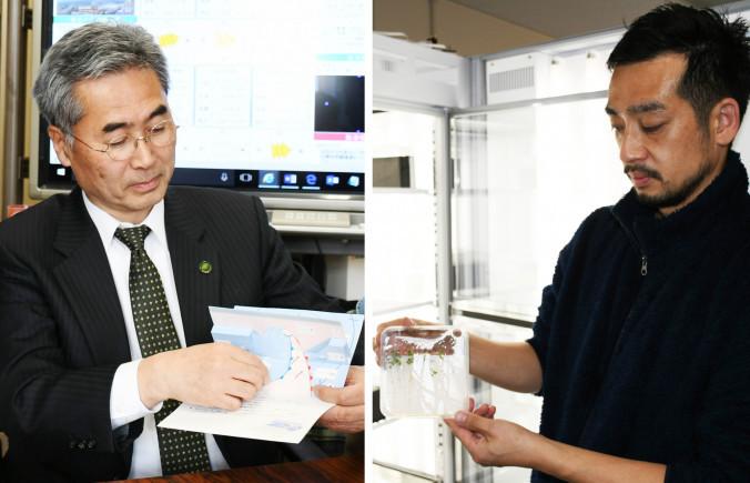 ㊨マメ科植物のミヤコグサを観察する川原田泰之助教、㊧温帯低気圧3Dペーパークラフトモデルを手にする名越利幸教授