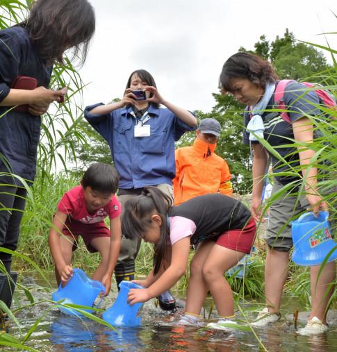 川底のカワシンジュガイを探す子どもたち