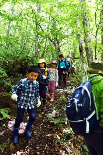 木漏れ日の差す山道を歩く参加者たち。子どもたちは最後まで元気いっぱいだった